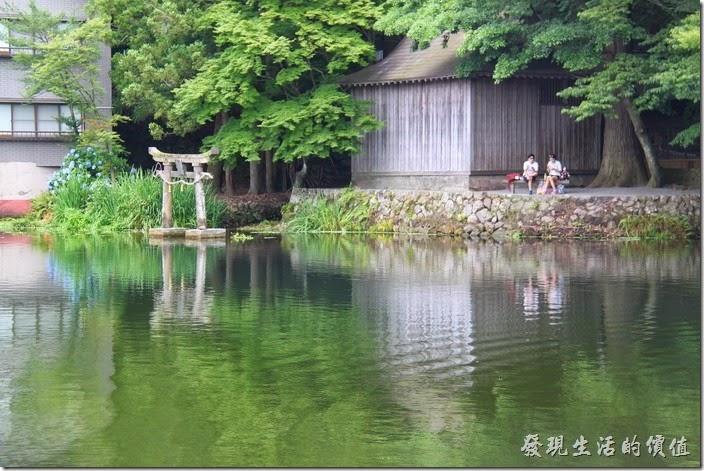 日本北九州-金鱗湖。鳥居其實是在「天祖神社」的後方,想拍照還得繞到其後方。