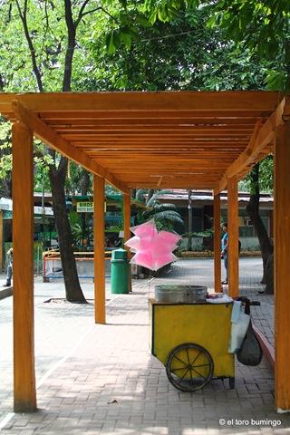 manila zoo 30