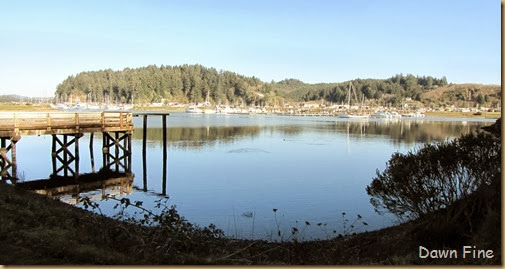 Winchester bay_134