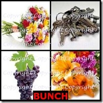 BUNCH- 4 Pics 1 Word Answers 3 Letters