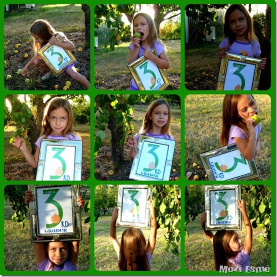 3rd Grade Pears