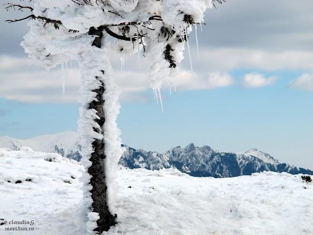 Ciucas-Bratocea-iarna_1757_rw.jpg