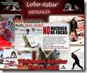 denuncia_matanza_focas