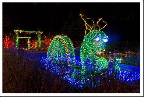 2011Dec31-Brookside-Gardens-65
