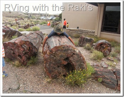 Visiting National Parks give you a chance to appreciate nature, to learn about the world around you, to collect Jr. Ranger badges, and to have fun!  RVing with the Raki's - The Petrified Forest