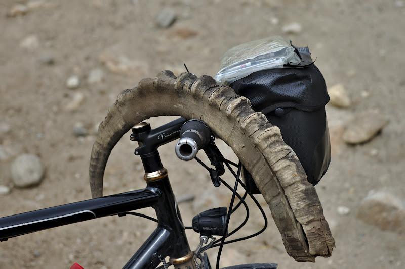 Peste tot se intalnesc coarnele caprelor de munte din zona.