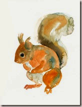 SQUIRREL 5x7inch Print