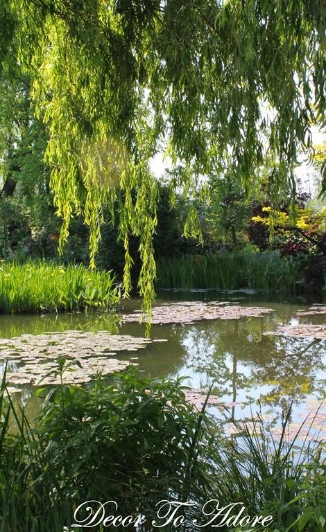 Monet's Garden 105