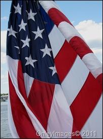 eagle flag (2)