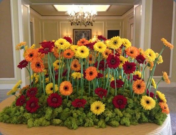 gerbera epoch floral  998390_10151641796652010_1427458895_n