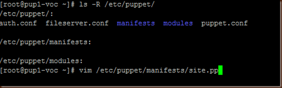 puppet-site.pp