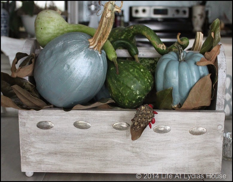 box of pumpkins and gourds