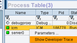 SAP MC ICM display trace