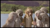 11 les lémuriennes