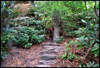17 - Rock Garden Trail - Trail Changes to Stone Steps