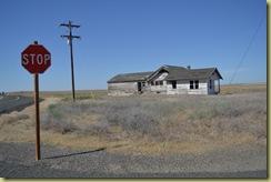 Derilict House