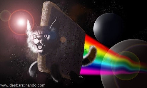nyan cat wallpaper meme desbaratinando (9)