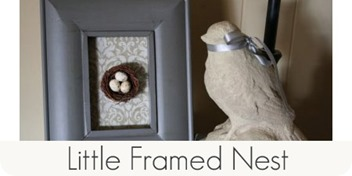 Little framed nest