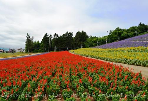 Glória Ishizaka - Naka Furano - Hokkaido 11