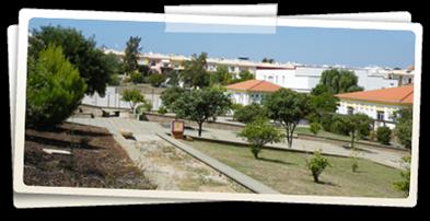 Escola Secundária de Pinheiro e Rosa