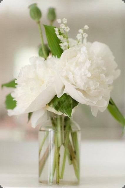 261888_10150238052755957_137814_n flora bella