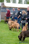 20100513-Bullmastiff-Clubmatch_30990.jpg