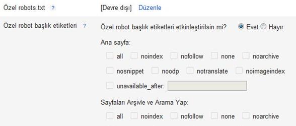 özel robot txt