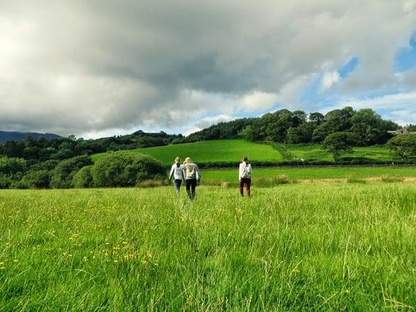 wandeling gras