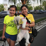 Pet Express Doggie Run 2012 Philippines. Jpg (109).JPG