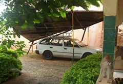 Carport Collapse
