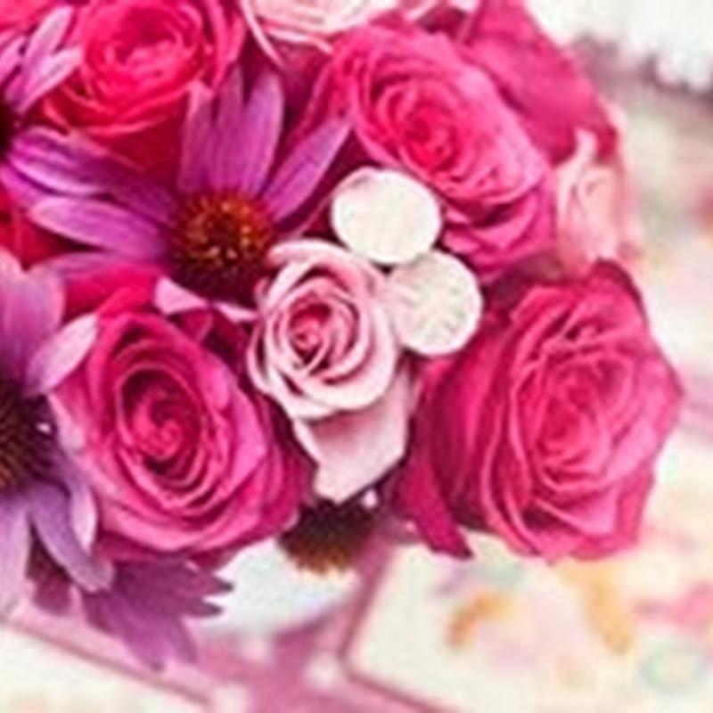 Florile – hrana sufletului meu