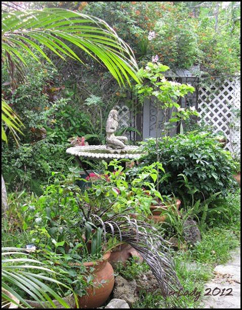 06-08 jungle7