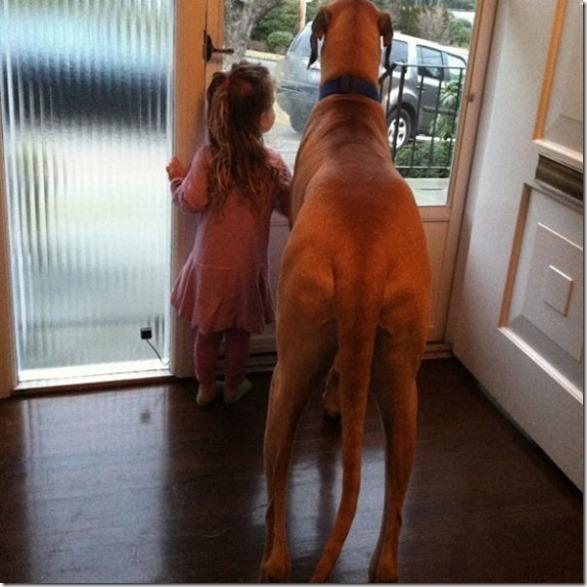 dogs-kids-best-friend-18