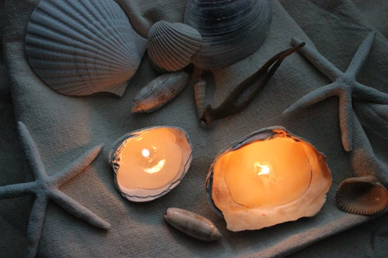 DIY Seashell Candles Shell Craft Tutorial