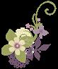 jazmyne-flowers