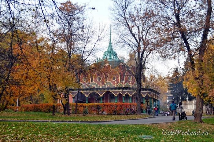 Botanicheskiy_sad_moskva_35.jpg