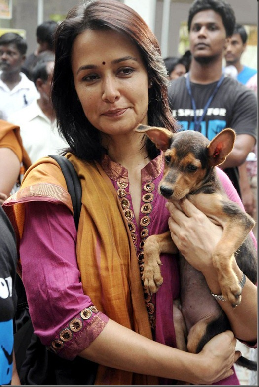 Amala Akkineni Wiki http://stillsbay.blogspot.com/2012/06/old-actress-amala-new-photos.html