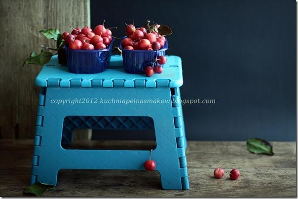 rajskie jabłuszka (3)