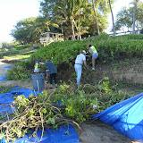 Kamaole 3 workday 9-12-11 029.JPG