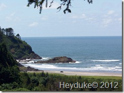 Along Cape Disappointment