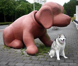 Rembrandt Park hounds (1)