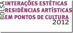 bolsa interações estéticas 2012