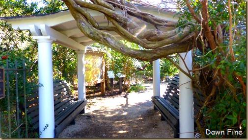 Magnolia Plantation_012