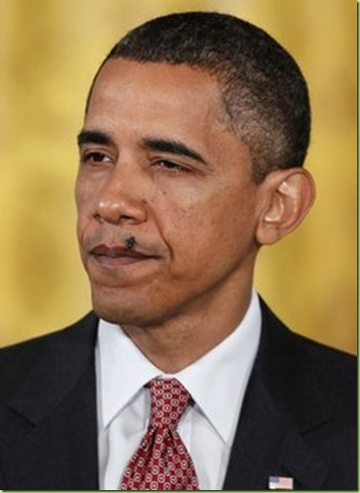 obama-fly-on-face