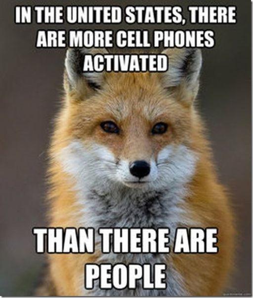 fox-facts-meme-7