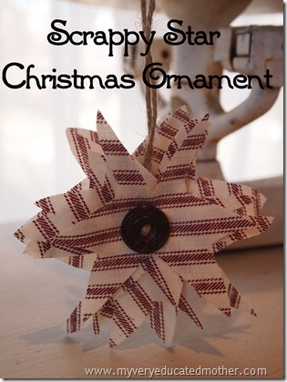 www.myveryeducatedmother.com: Scrappy Star Christmas Ornament