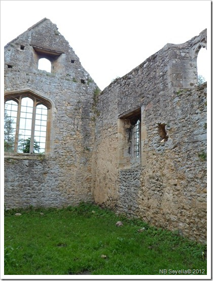 SAM_1634 Godstow Abbey