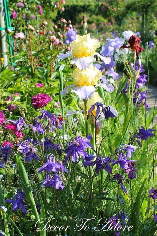Monet's Garden 009