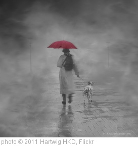 'Walking in the Rain' photo (c) 2011, Hartwig HKD - license: http://creativecommons.org/licenses/by-nd/2.0/