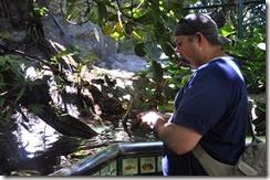 San Diego Zoo 13